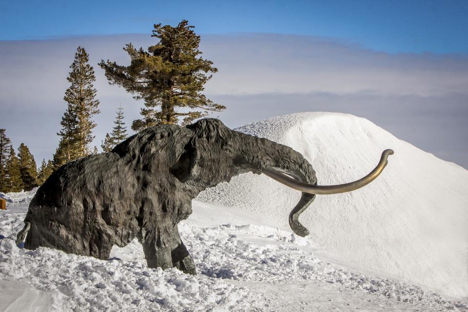 La Vista Blanc 39 - Mammoth Lakes Vacation Rental - Photo 35