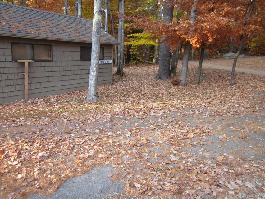 Genes Lodge - Windham Vacation Rental - Photo 4