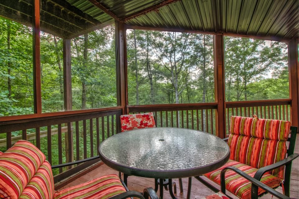 The Bird and  the Bear - Talking Rock Vacation Rental - Photo 6