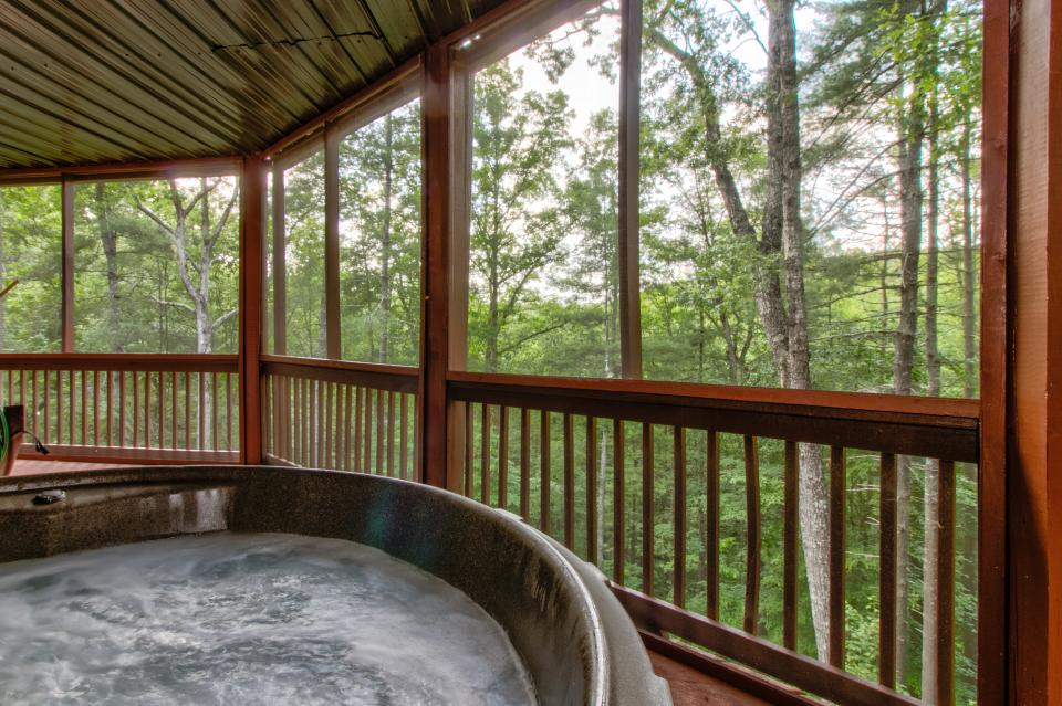 The Bird and  the Bear - Talking Rock Vacation Rental - Photo 3