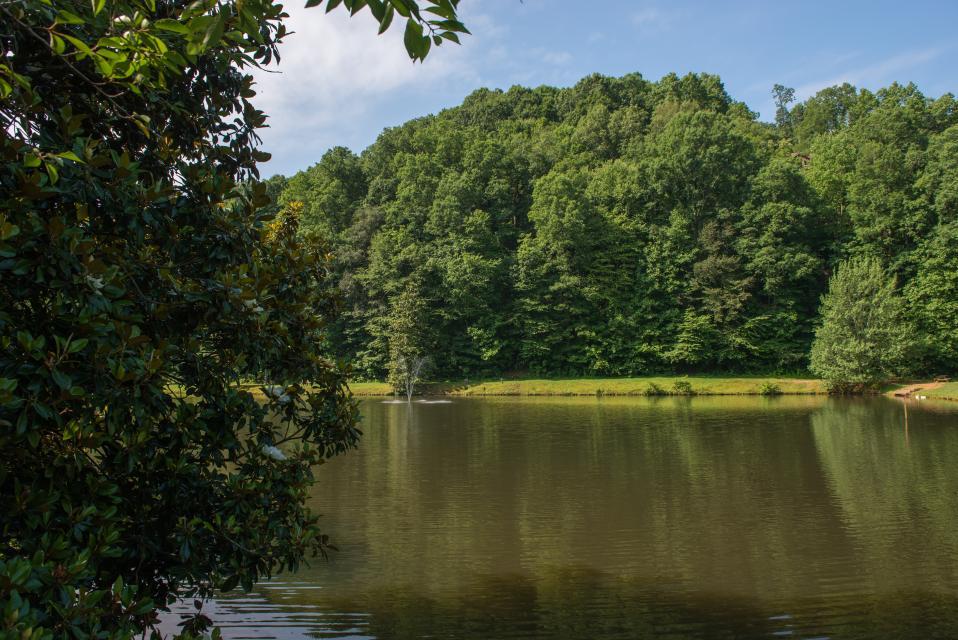 Wilderness Lodge - Ellijay Vacation Rental - Photo 56