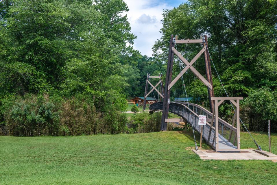 Wilderness Lodge - Ellijay Vacation Rental - Photo 61