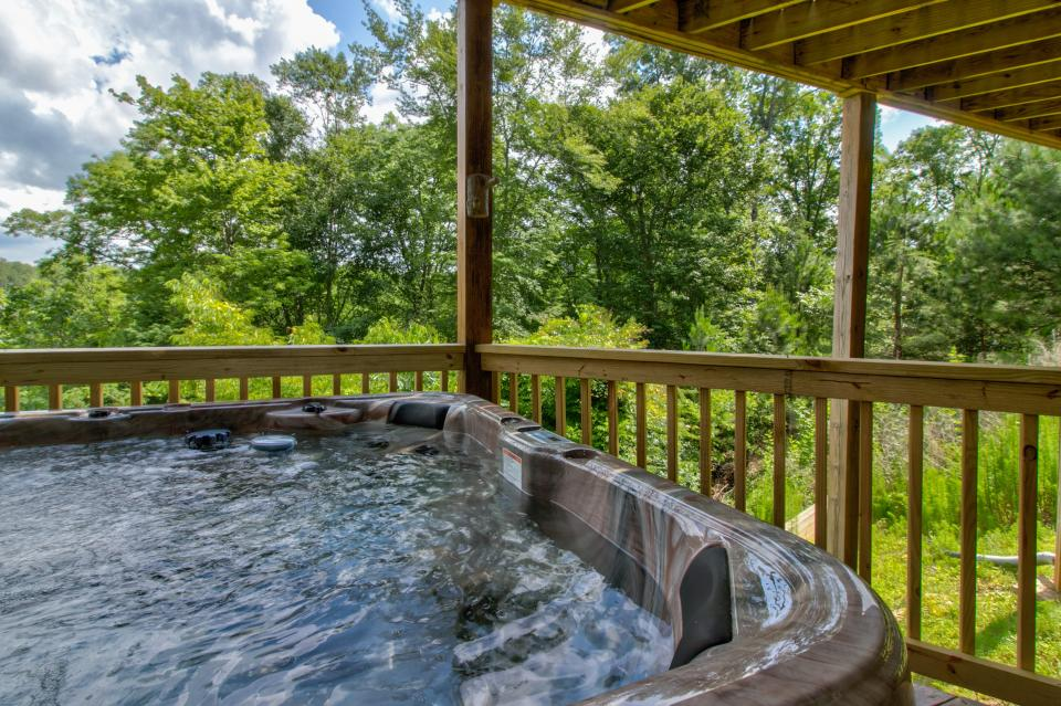 Wilderness Lodge - Ellijay Vacation Rental - Photo 3