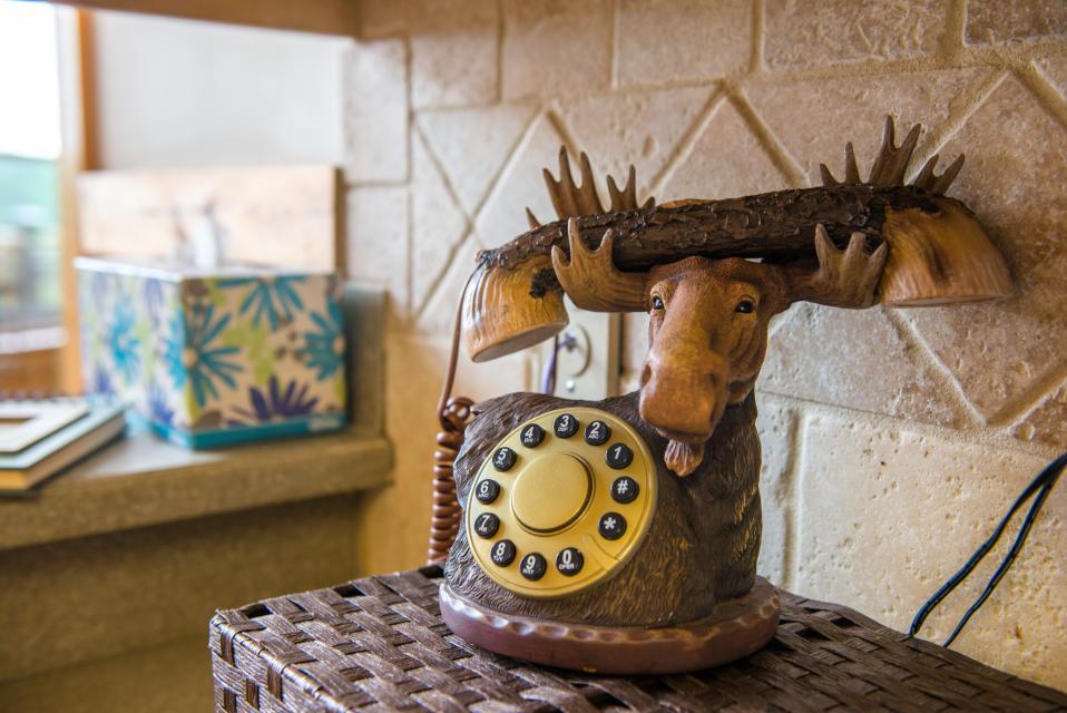 Wilderness Lodge - Ellijay Vacation Rental - Photo 41