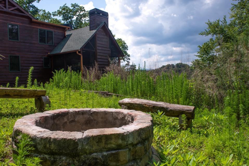 Wilderness Lodge - Ellijay Vacation Rental - Photo 30
