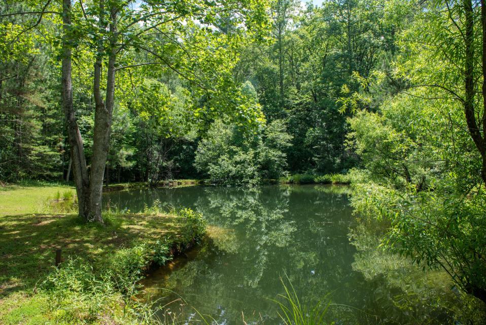 Weeks Creek Lodge - Blue Ridge Vacation Rental - Photo 20