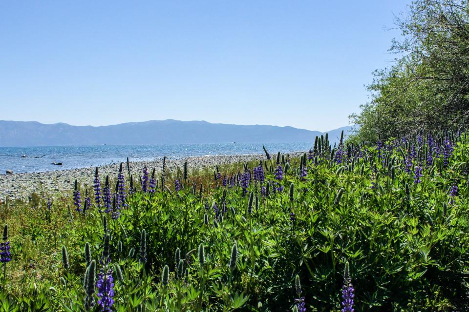 Tamarack Mountain Home - South Lake Tahoe Vacation Rental - Photo 35