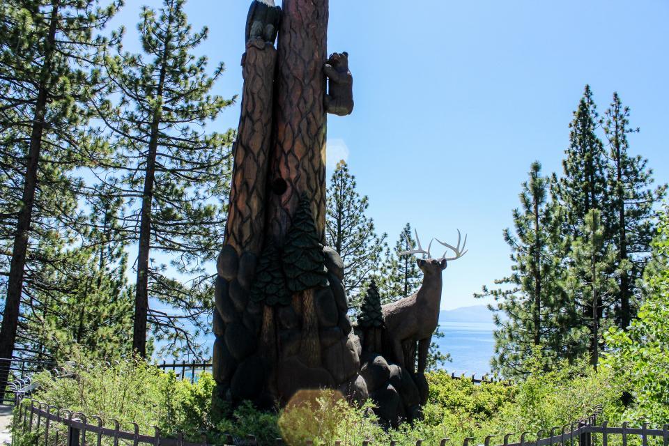 Tamarack Mountain Home - South Lake Tahoe Vacation Rental - Photo 28