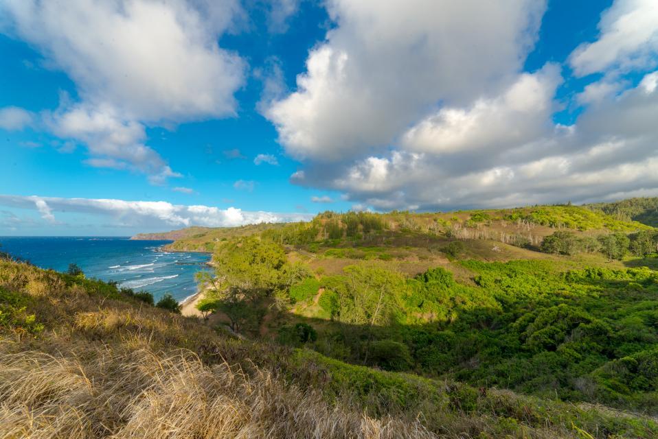 Maui Kaanapali Villas 295 - Lahaina Vacation Rental - Photo 37