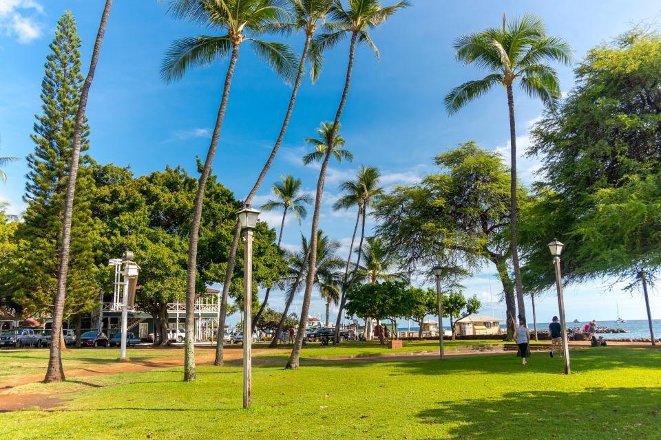 Maui Kaanapali Villas 295 - Lahaina Vacation Rental - Photo 46
