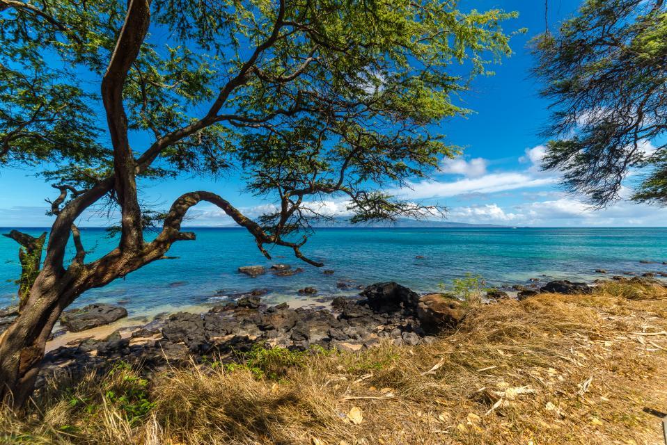 Maui Kaanapali Villas 295 - Lahaina Vacation Rental - Photo 38