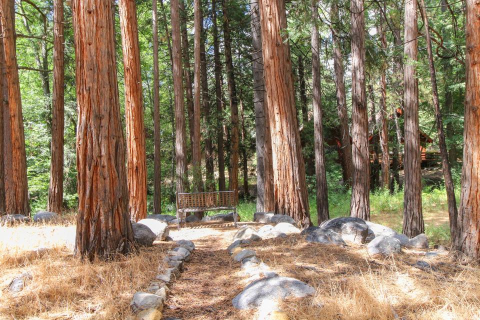 Creekside Hide-Away - Idyllwild Vacation Rental - Photo 23