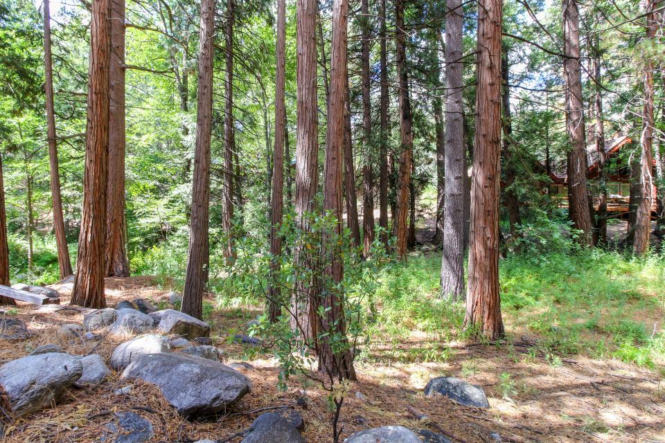 Creekside Hide-Away - Idyllwild Vacation Rental - Photo 24