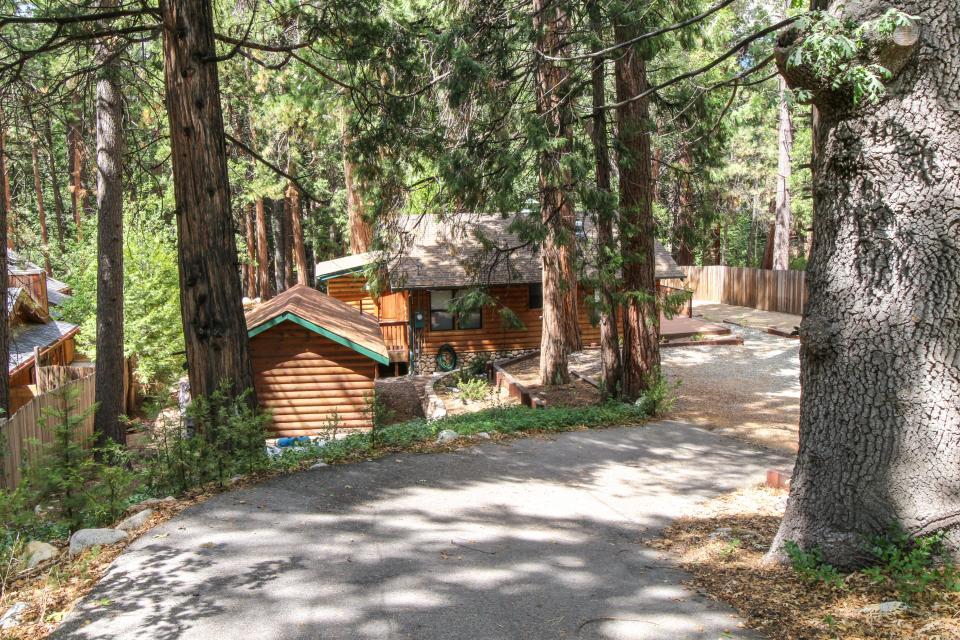 Creekside Hide-Away - Idyllwild Vacation Rental - Photo 28