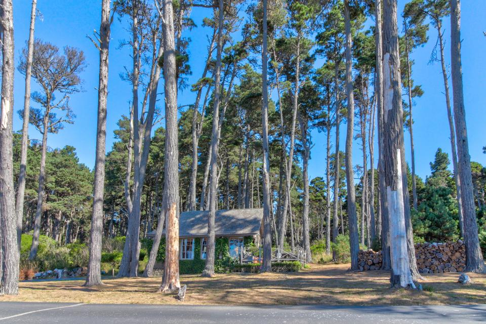 Le Faux - Fort Bragg Vacation Rental - Photo 24