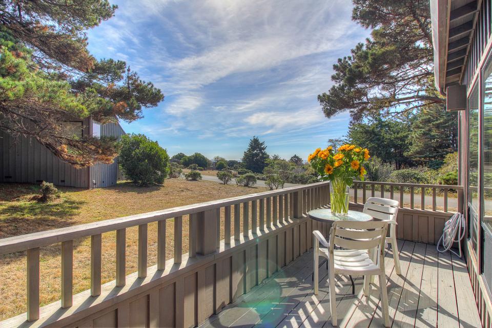 Happy Family House - Sea Ranch Vacation Rental - Photo 29