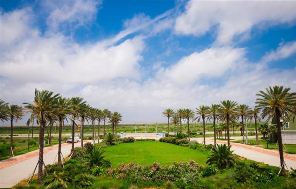 Reposado - Galveston Vacation Rental - Photo 22