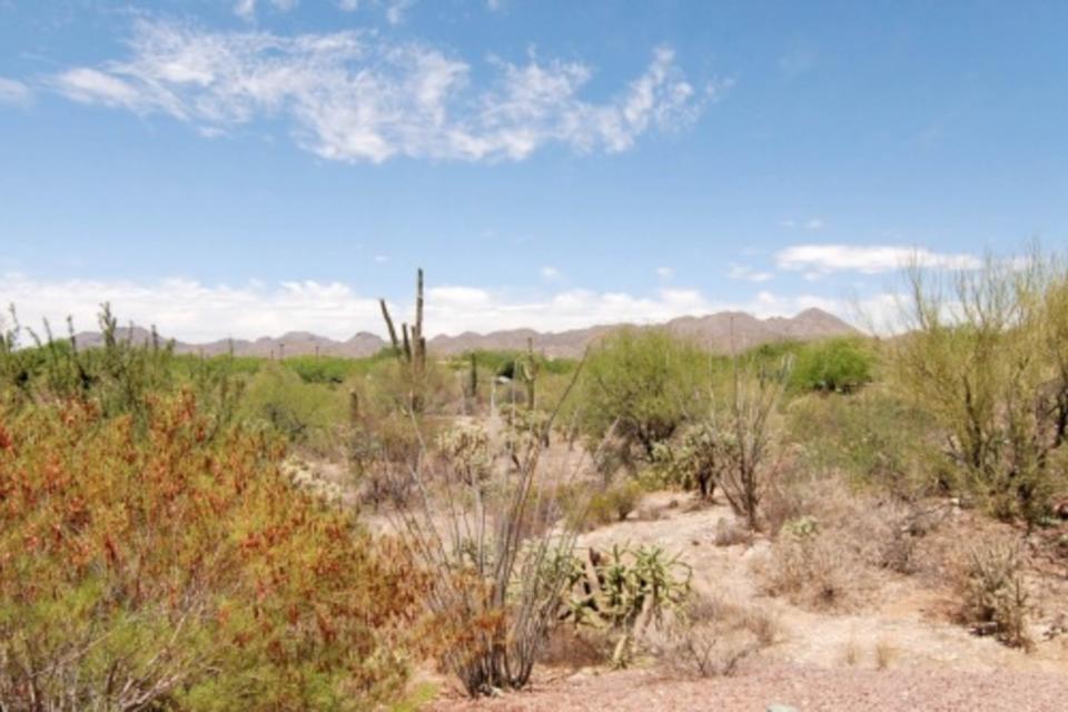 Rancho Vistoso #219C - Oro Valley Vacation Rental - Photo 35
