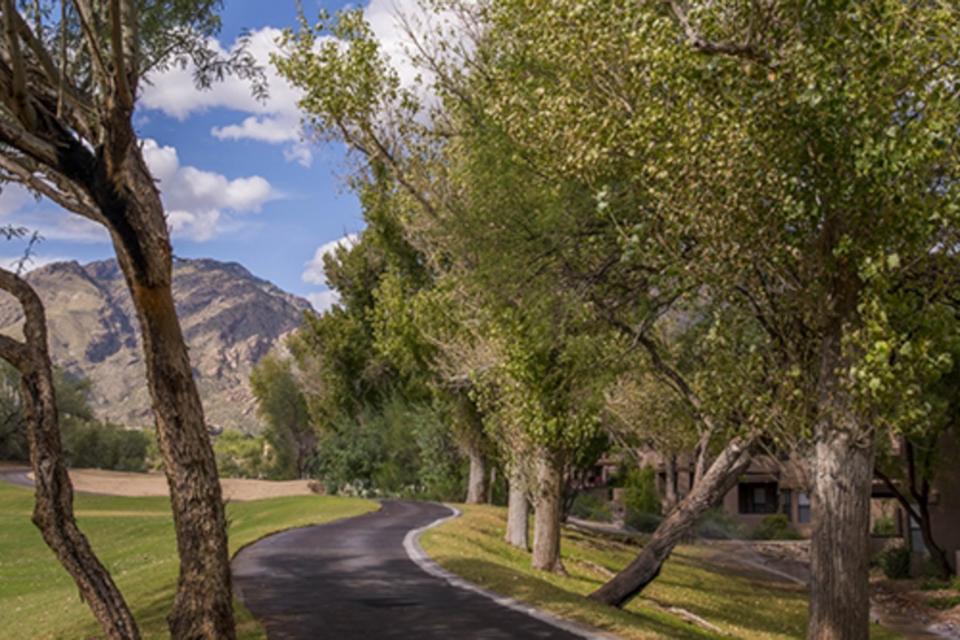 Vistoso Resort Casita #132 - Oro Valley Vacation Rental - Photo 24