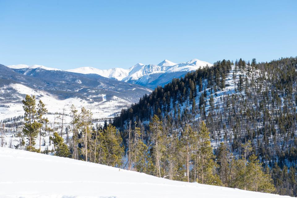 Deer Cabin  - South Fork Vacation Rental - Photo 25