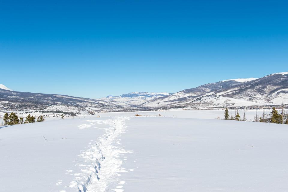 Deer Cabin  - South Fork Vacation Rental - Photo 23