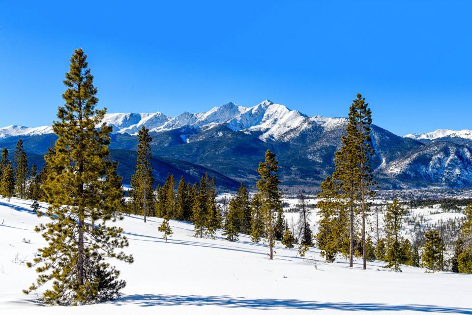 Deer Cabin  - South Fork Vacation Rental - Photo 24