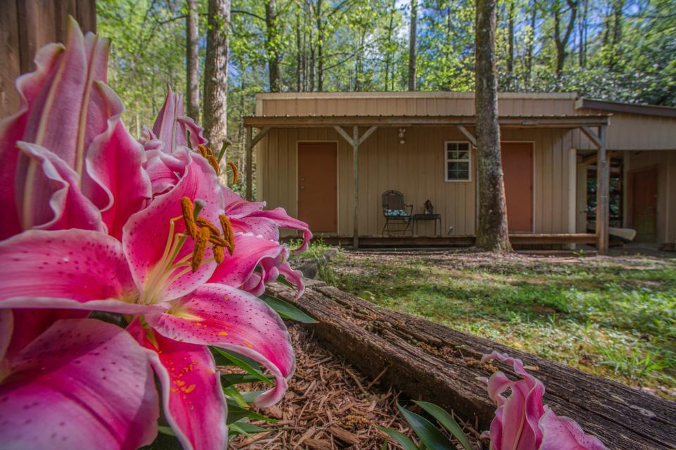 At Last Cabin - Ellijay Vacation Rental - Photo 26