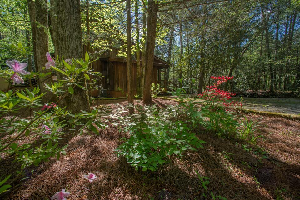 At Last Cabin - Ellijay Vacation Rental - Photo 29