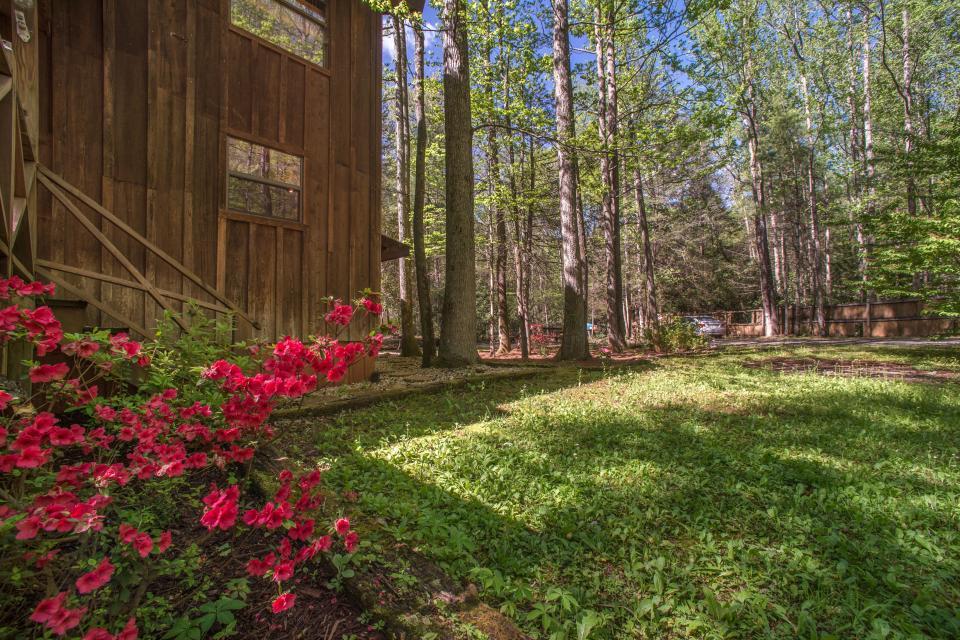 At Last Cabin - Ellijay Vacation Rental - Photo 46