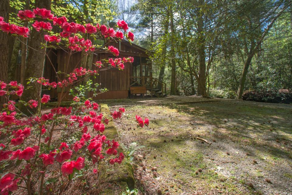 At Last Cabin - Ellijay Vacation Rental - Photo 28