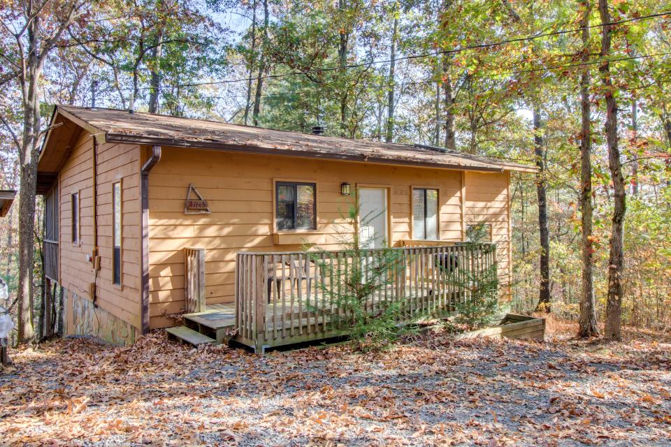 Birch Tree Cabin - Ellijay Vacation Rental - Photo 2
