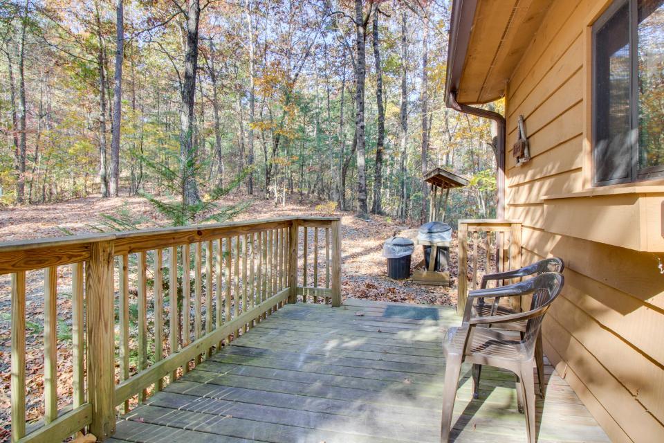 Birch Tree Cabin - Ellijay Vacation Rental - Photo 21