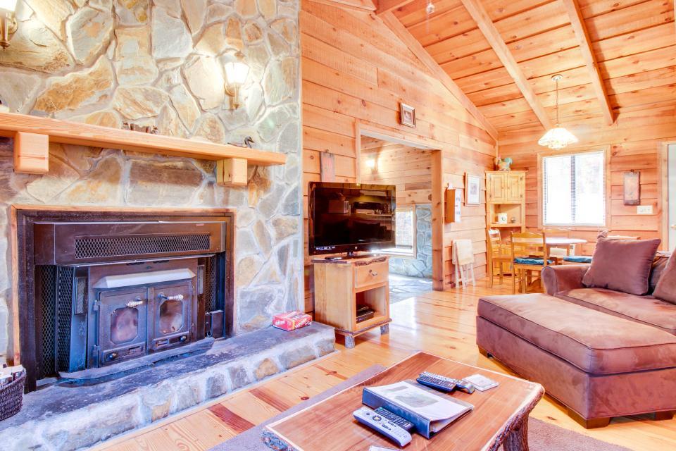 Birch Tree Cabin - Ellijay Vacation Rental - Photo 3