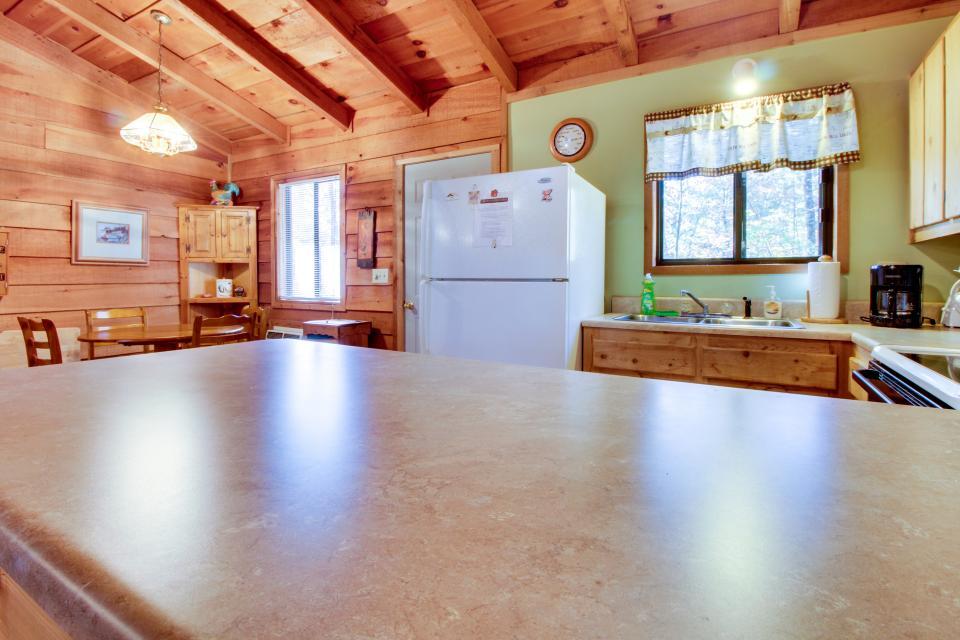 Birch Tree Cabin - Ellijay Vacation Rental - Photo 13