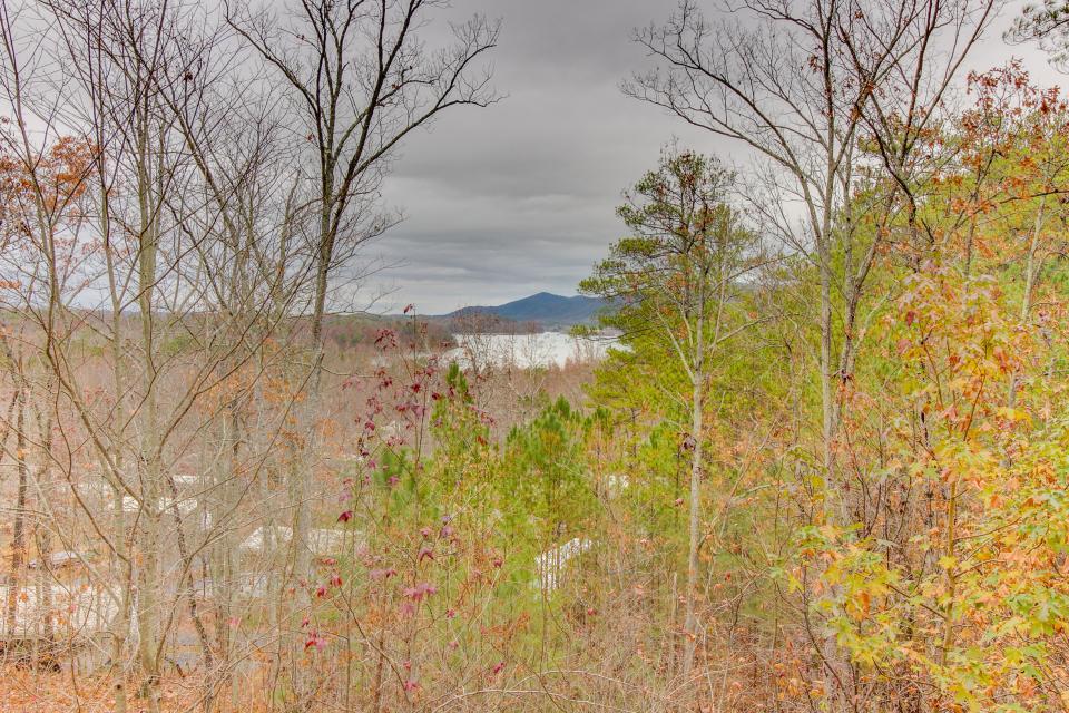 Cherokee Overlook Cabin - Chatsworth Vacation Rental - Photo 27