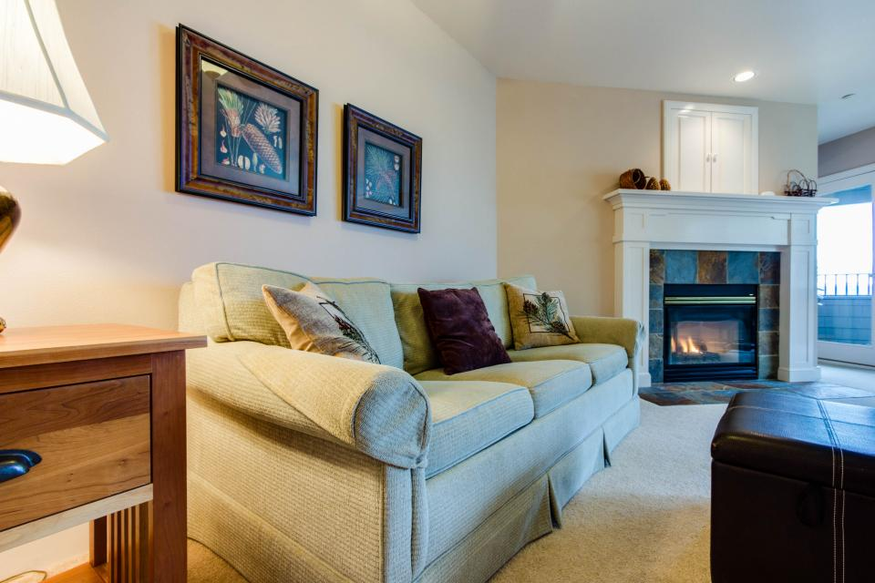 Lakeshore Point (A101) - Harrison Vacation Rental - Photo 5