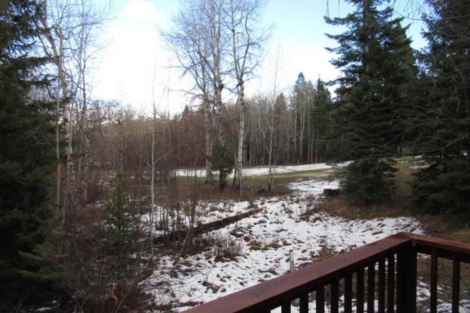 Mountain Safari Lodge - McCall Vacation Rental - Photo 10