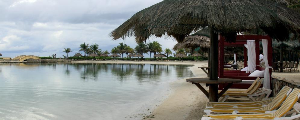 Parrot tree plantation and beach resort,