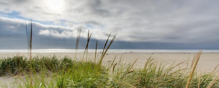 Vacation rental guest reviews in seaside or vacasa seaside or sciox Gallery