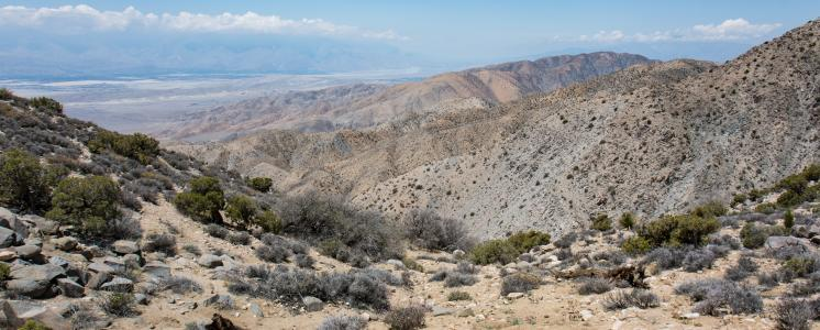 Morongo valley, CA