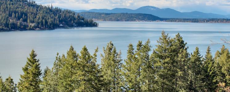Lake Coeur d'Alene