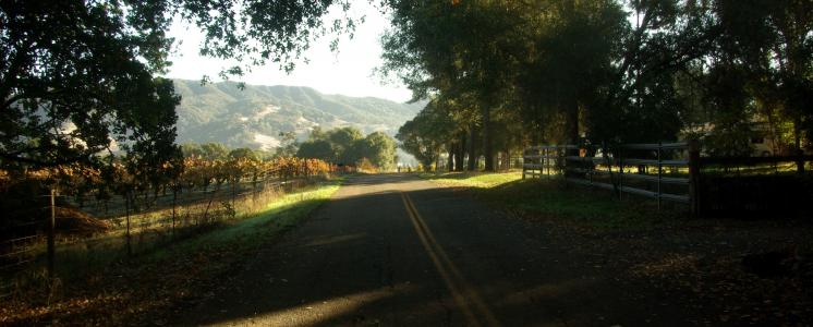 Redwood valley, CA