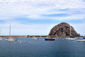 Morro Bay Vacation Rentals Beach House Rentals Vacasa