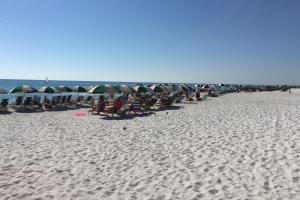 Inlet beach, fl